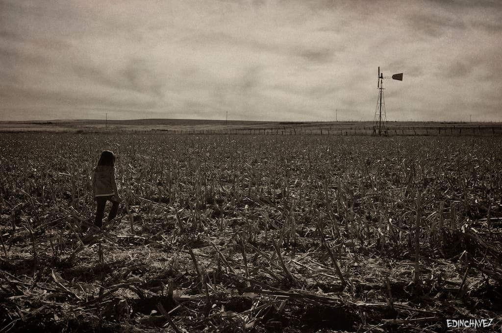 Daily Photo-Field Of Dreams