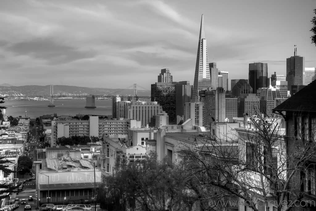 Shot of the Day-San Fran From the top