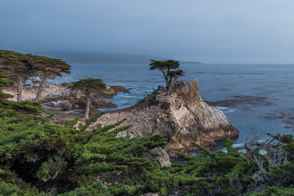 LoneCypress 17 Mile Drive