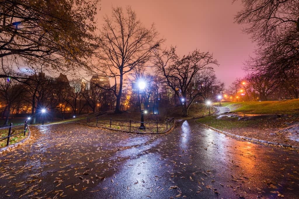 Central Park photographed on a very cold rainy night