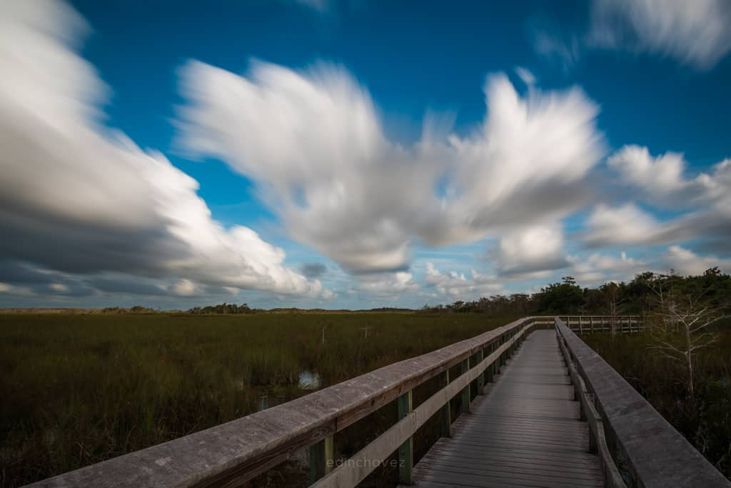 Long Exposure at the Everglades