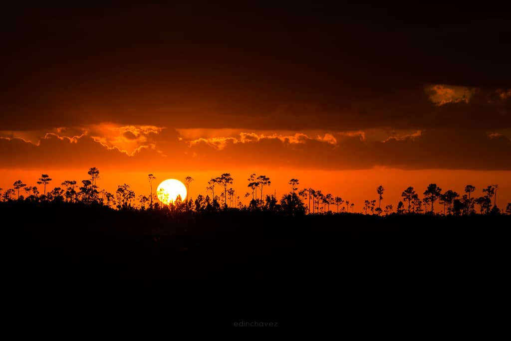 Everglades Sunset Photography Workshop