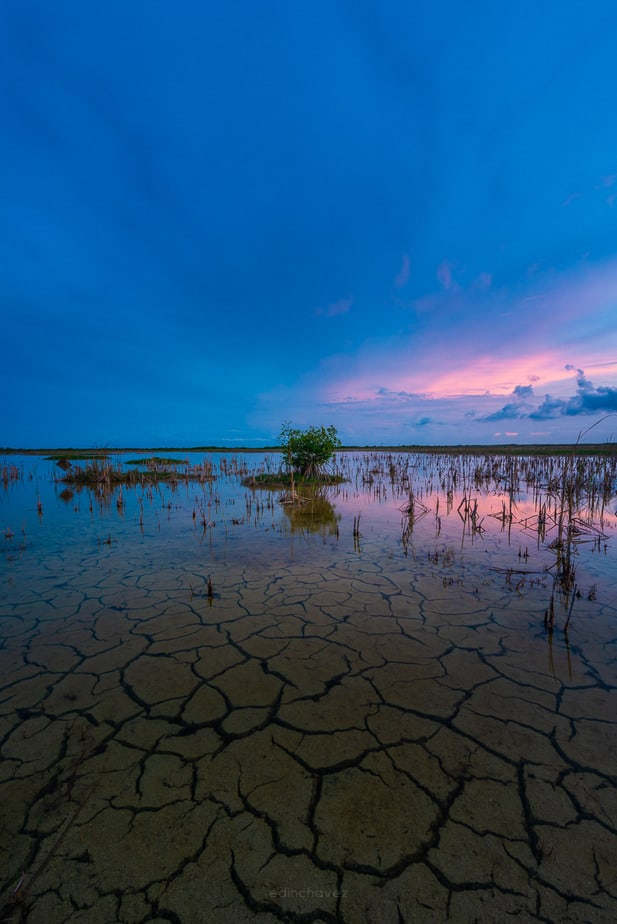 Best Everglades Sunset Photography Workshop and Tour