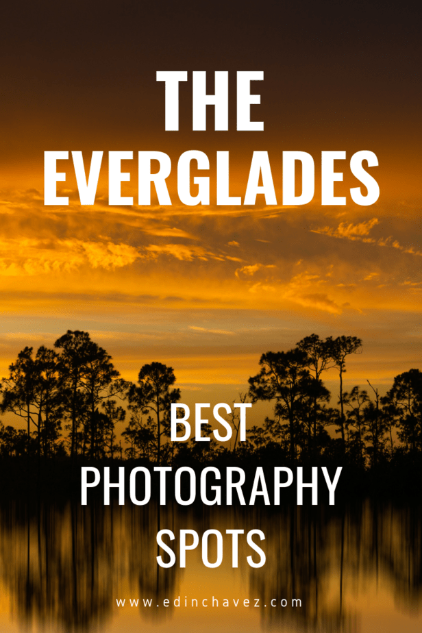 Best places to photograph in the everglades nationla park