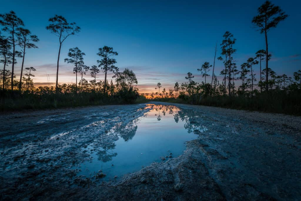 best places to photograph at the everglades