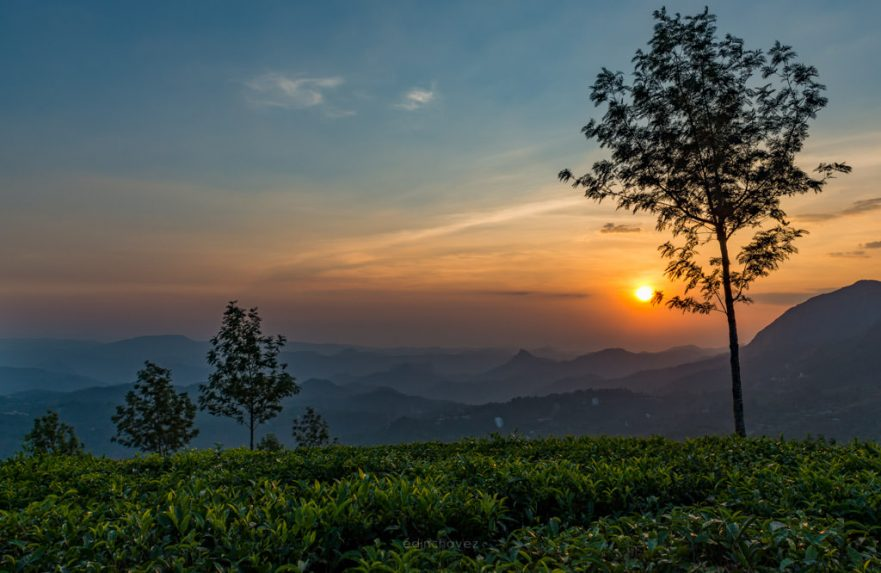 Wayanad mountains sunset best places to photograph in kerala